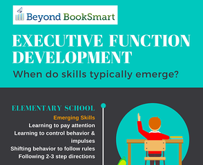 What are Executive Function Skills
