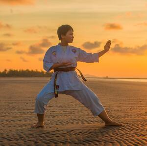 Karate as a way to train Executive Function