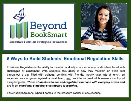 emotion regulation tips.png