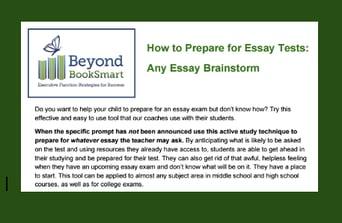 Any essay brainstorm
